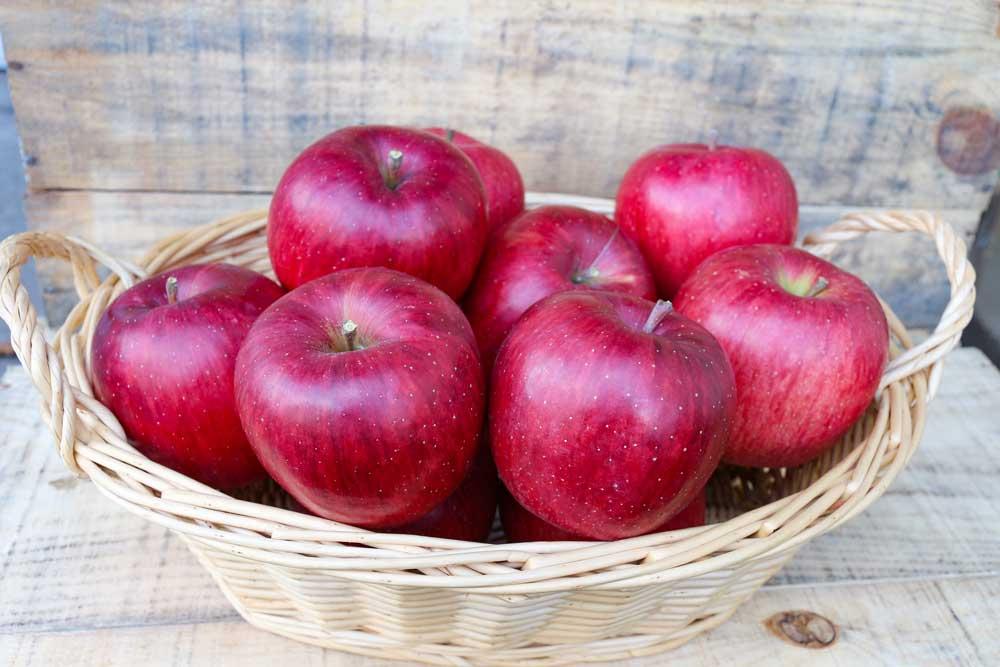 シナノスイート りんご